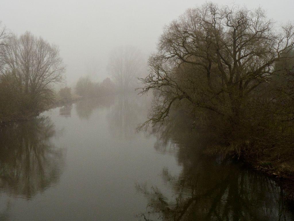 Nebel über der Regnitz